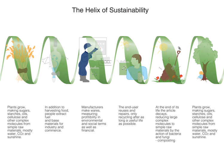 750px-helix_of_sustainability.png